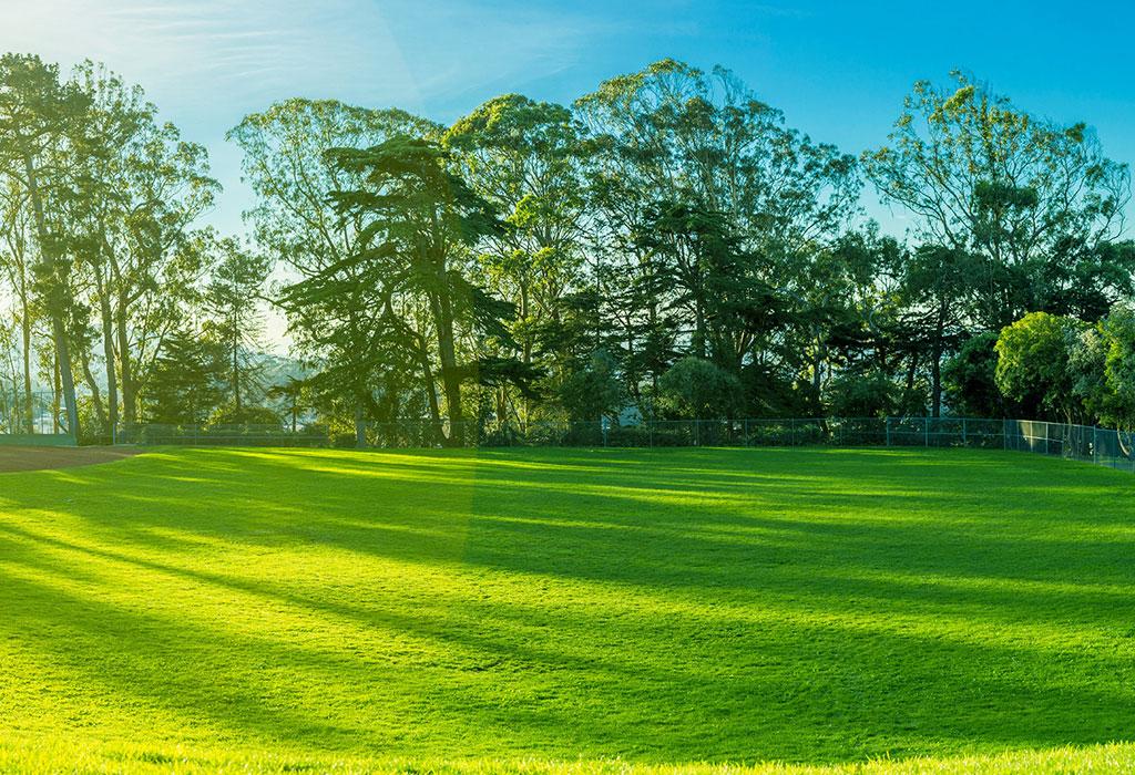 Park Properties | Sri Lanka Real Estate Agent | Lands for